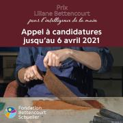 Appel à candidatures Prix Liliane Bettencourt pour l'intelligence de la main® 2021